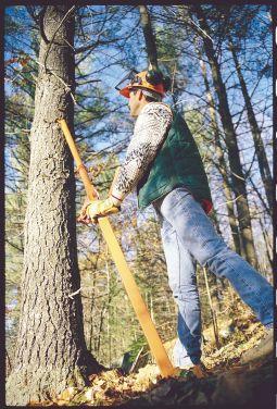 TimberTool Tree-Felling Jack